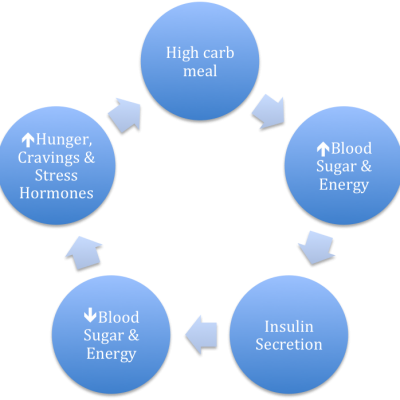 Hormones and Fat Loss: The Hormone Responsible for Making You Fat, Hungry and Tired