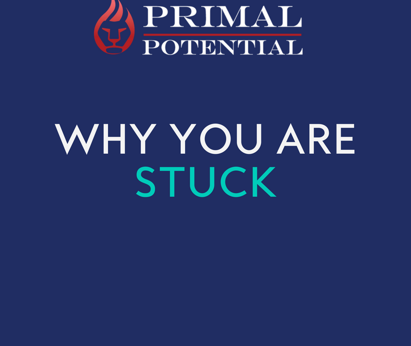 441: Why You Are Stuck
