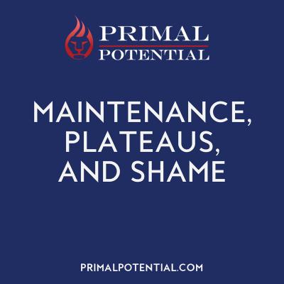 463: Maintenance, Plateaus & Shame