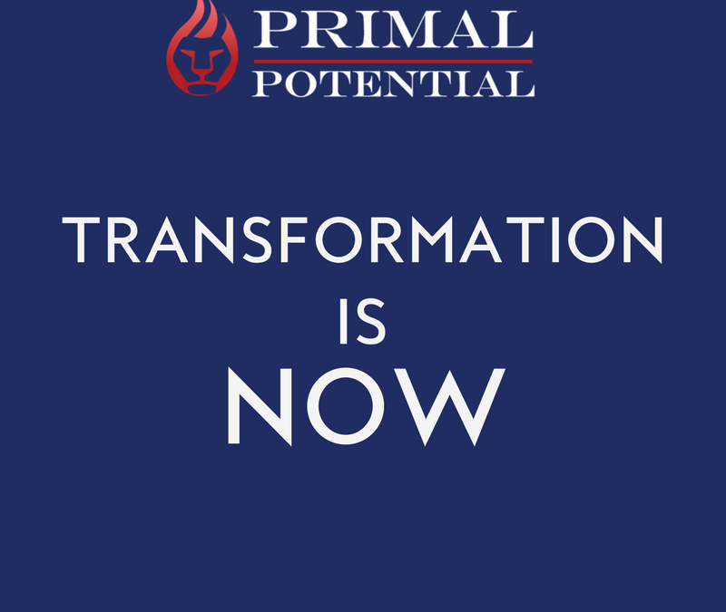 480: Transformation is NOW