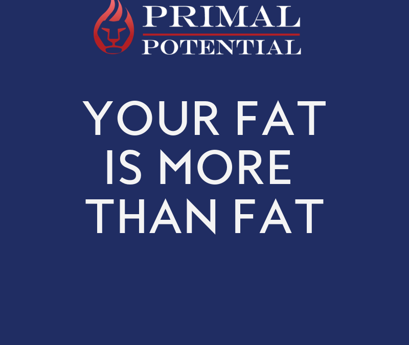 517: Your Fat Is More Than Fat