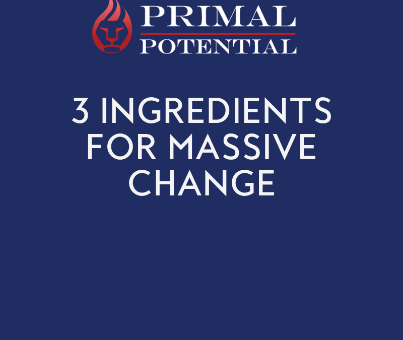 530: 3 Ingredients For Massive Change